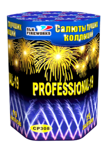 Professional 19