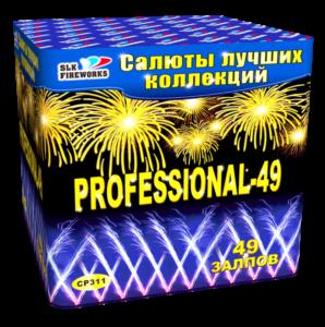 Professional 311